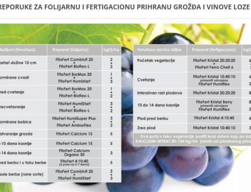Folijarna prihrana vinove loze