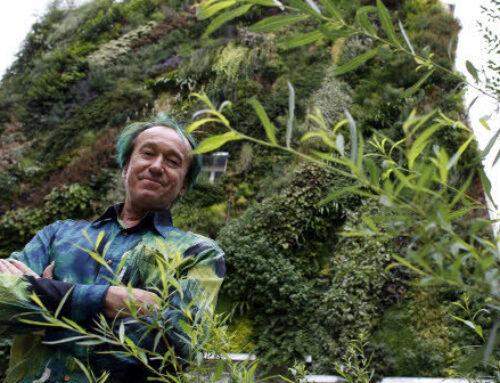 Zeleni zid čuva energiju doma