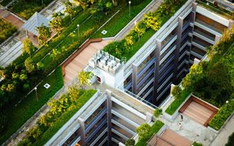 Projektovanje i izrada zelenih krovnih vrtova