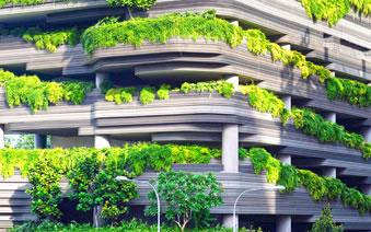 Projektovanje i izrada zelenih zidnih vrtova