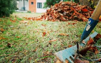 Održavanje i uređenje zelenih površina