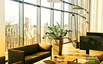 Održavanje zelenila u poslovnim zgradama