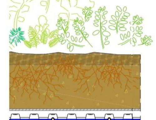 Rešenja za zeleni krov